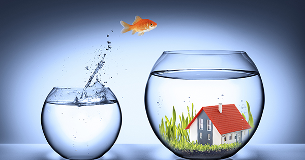 Buying a Home Remains 38% Less Expensive Than Renting!   Simplifying The Market