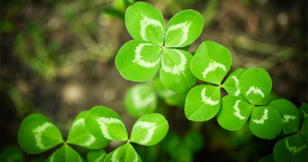 """Don't Let Your """"Luck"""" Run Out   Simplifying The Market"""